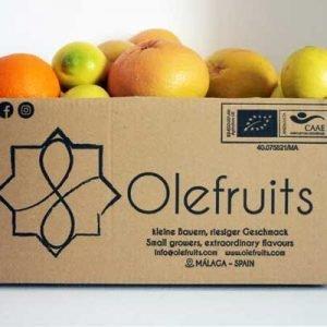 ORGANIC CITRUS-FRUITS-MIX BOX